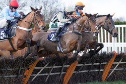 Horses take a hurdle