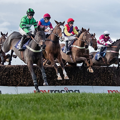 Hereford Races - Nov 12 2019