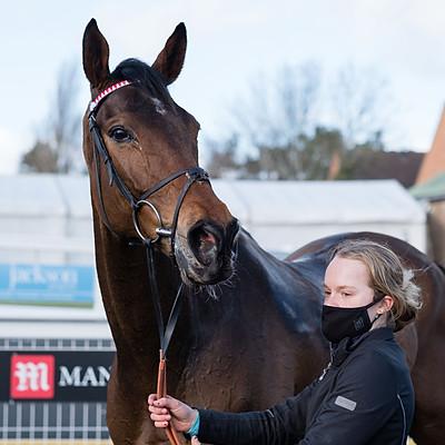 Winning Horses - 13 Mar 2021