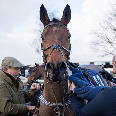 Winning Horses - 14 Dec, 2019