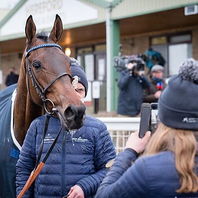 Winning Horses - 11 Jan 2021