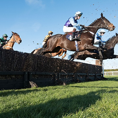 Hereford Races - 16 Dec 2017