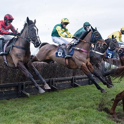 Hereford Races - 17 Feb 2021