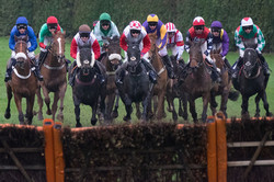 UK Horse racing photography