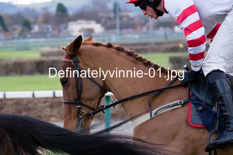 Definatelyvinnie-01
