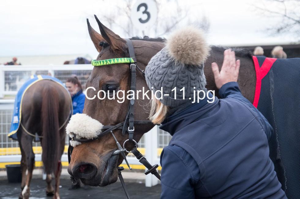 Cougarkid-11