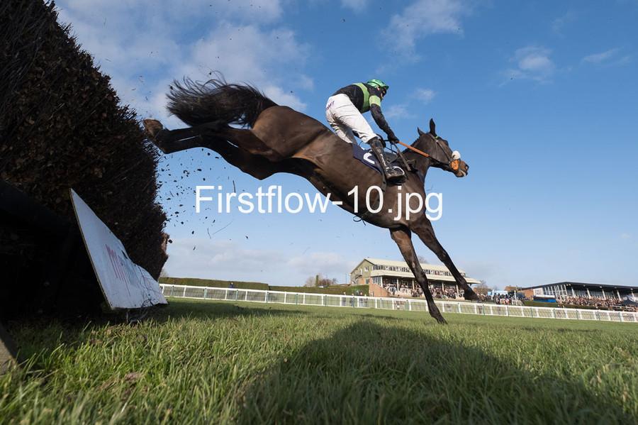 Firstflow-10
