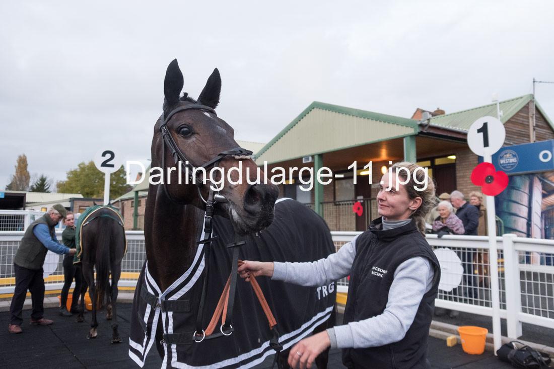 Darlingdularge-11