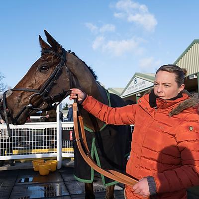 Winning Horses - 3 Jan 2020