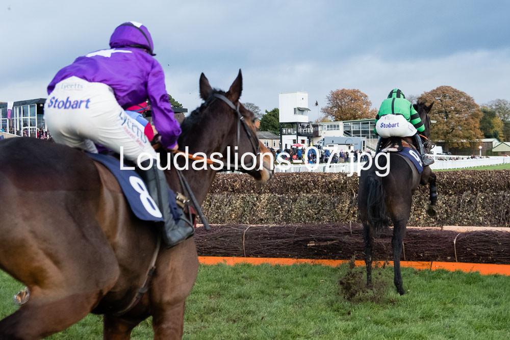 Loudaslions-07