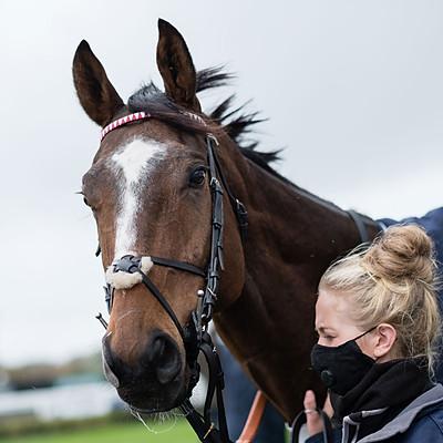 Winning Horses - 21 Oct 2020