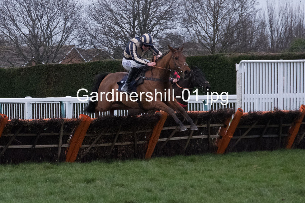 Gardinershill-01