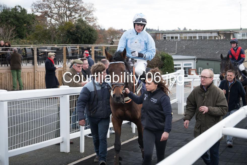 Courtliability-06