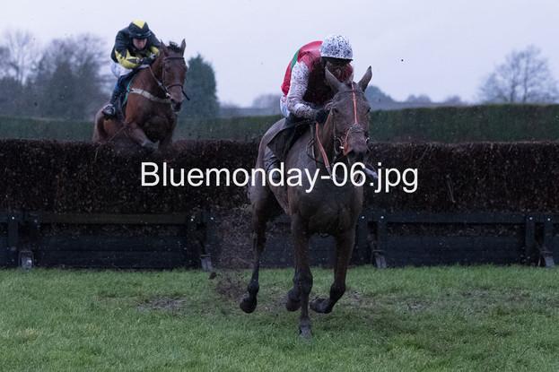 Bluemonday-06