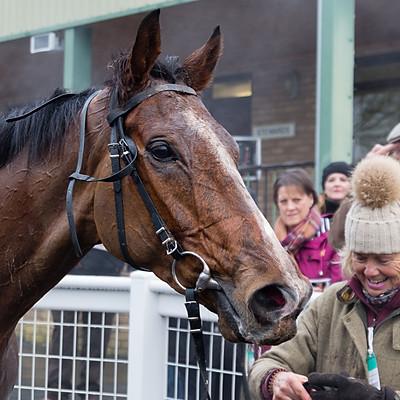 Winning Horses - 27 Nov 2019