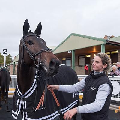 Winning Horses - 4 Nov 2019