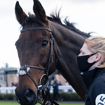 Winning Horses - 12 Dec 2020