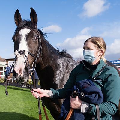 Winning Horses - 2 Nov 2020