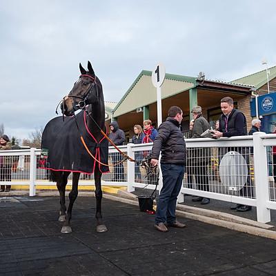 Winning Horses - 19 Nov 2018