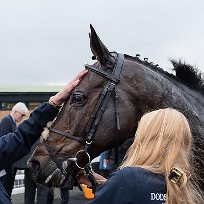 Winning Horses - 15 Oct 2019