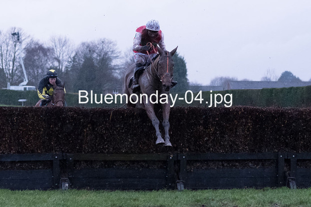 Bluemonday-04