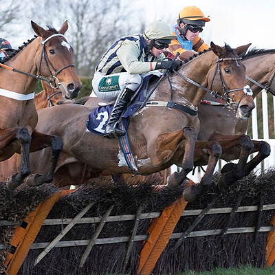 Hereford Races Jan 4, 2017
