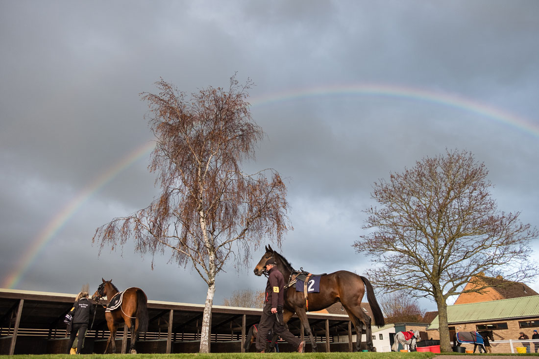 Rainbow over the parade ring