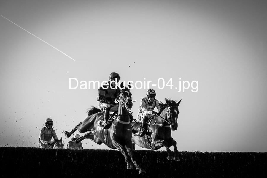 Damedusoir-04