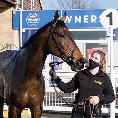 Winning Horses - 28 Feb 2021