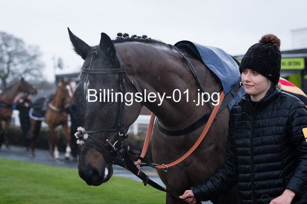Billingsley-01