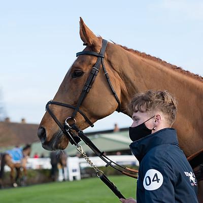 Winning Horses - 17 Dec 2020