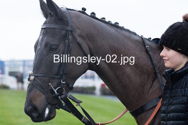 Billingsley-02