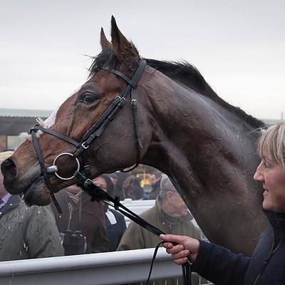 Winning Horses - Dec 19