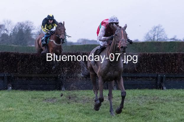 Bluemonday-07