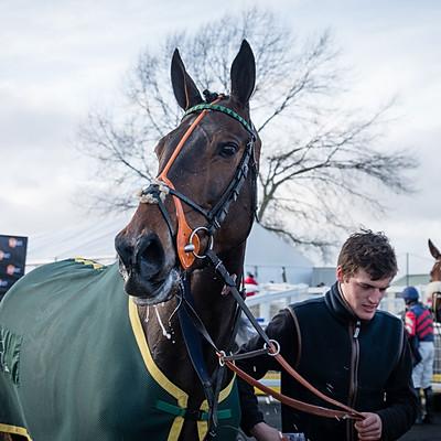 Winning Horses - 10 Mar 2018