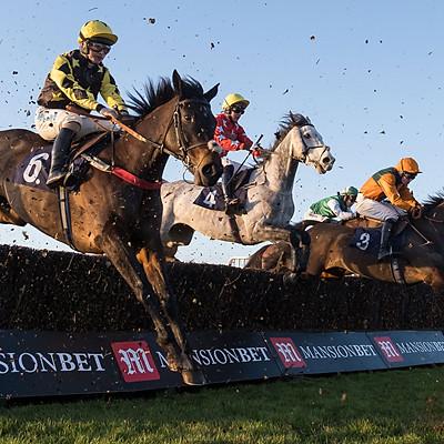 Hereford Races - 3 Jan 2020