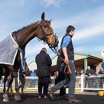 Winning Horses - 16 Mar 2020