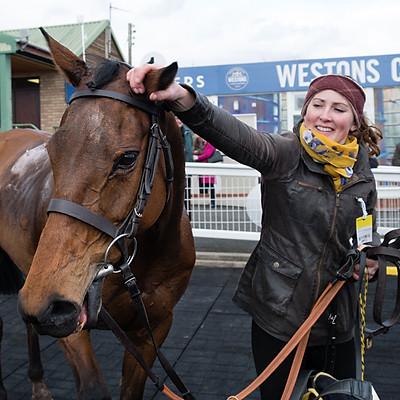 Winning Horses - 27 Mar 2018