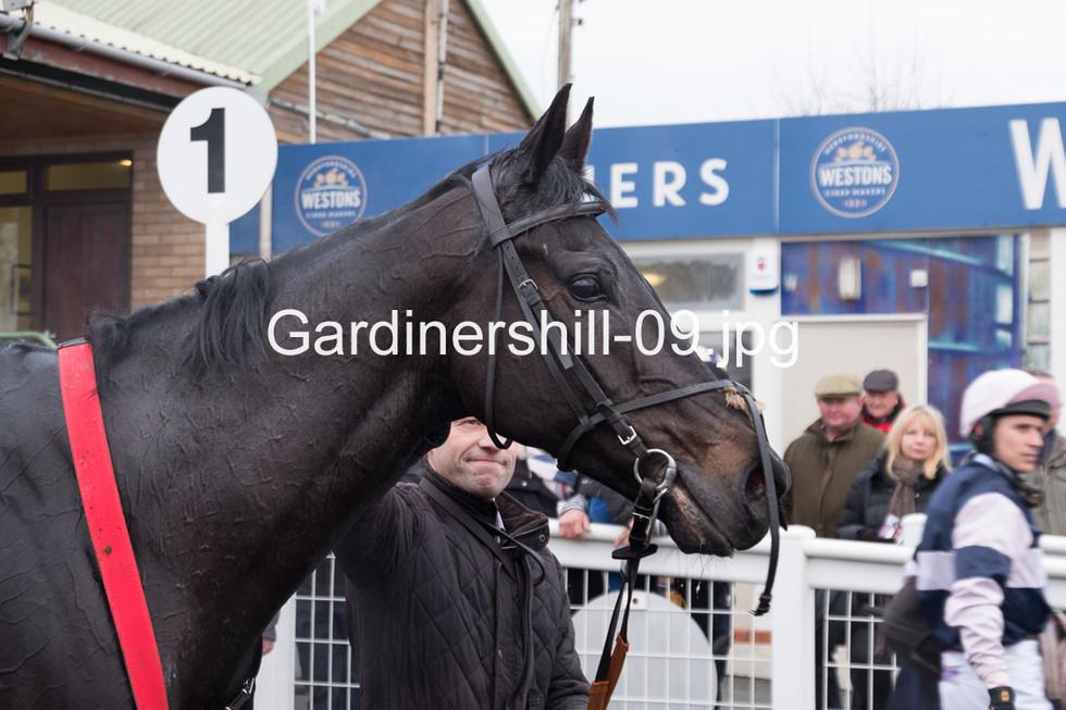 Gardinershill-09