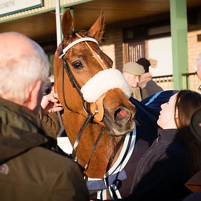 Winning Horses - 29 Jan 2018