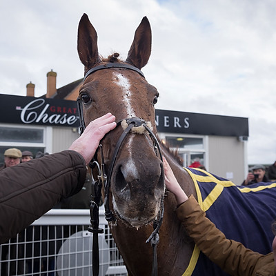 Winning Horses - Feb 1, 2017