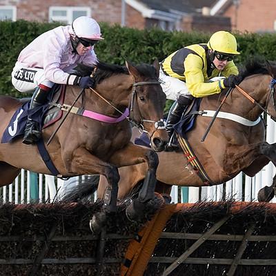 Hereford Races - Jan 11, 2017