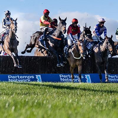 Hereford Races - 10 Nov 2020