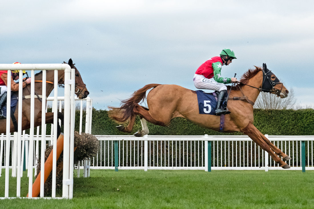 A horse clears the final fence