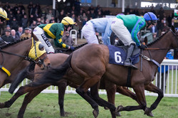 Horse racing pgotography