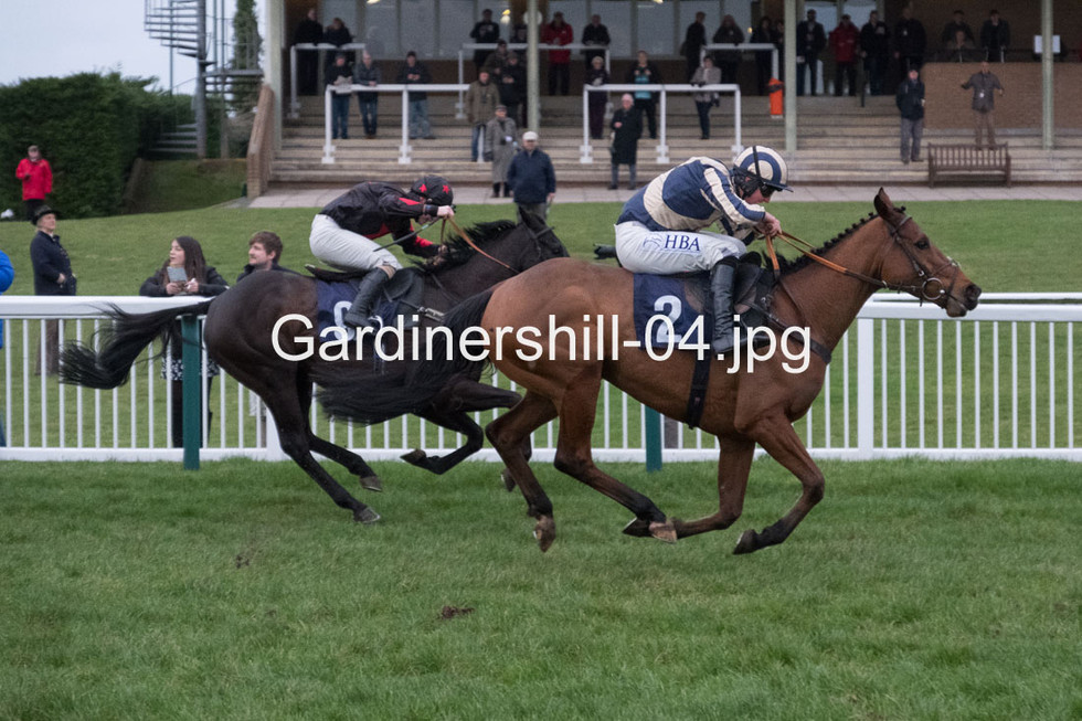 Gardinershill-04