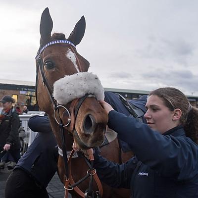 Winning Horses - 19 Dec 2019