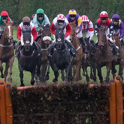 Hereford Races - 28 Nov 2018