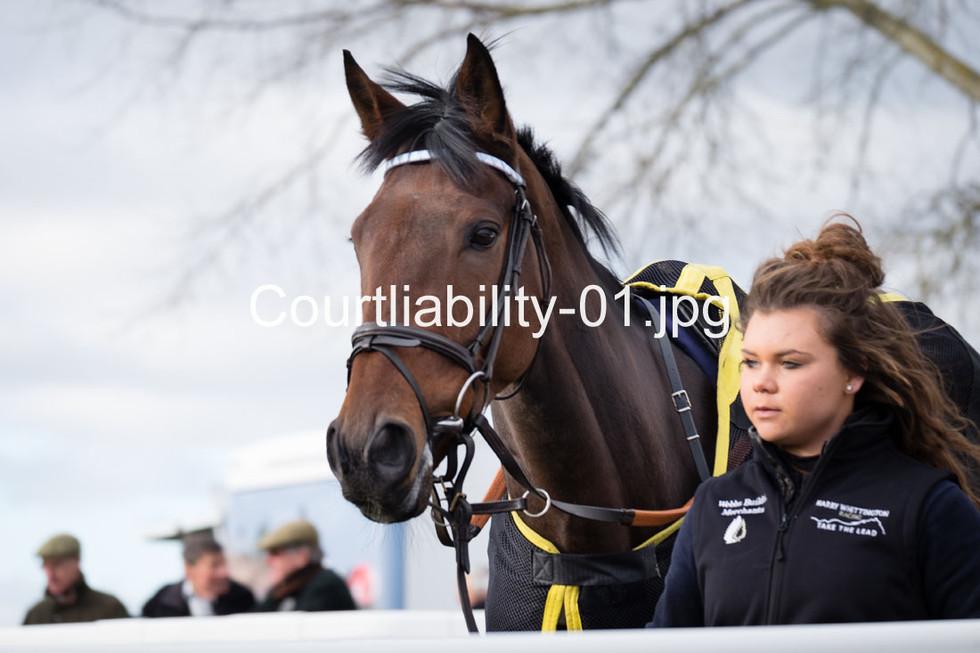 Courtliability-01