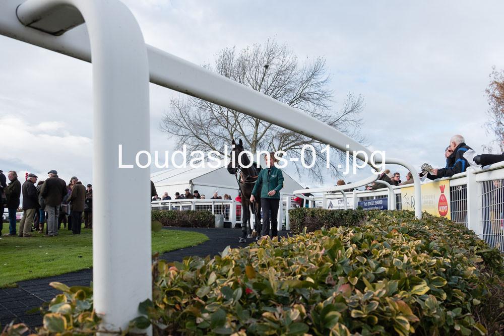 Loudaslions-01